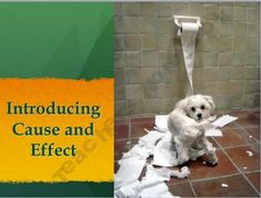 Cause and Effect Introduction Power Point Lesson
