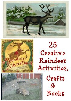 25 Fun Ideas to Explore Reindeer -- books, crafts & activities for the holidays!