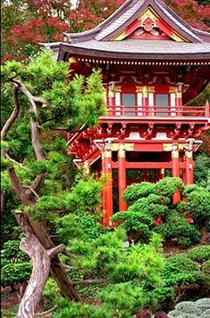 Japanese Tea Garden, Golden Gate Park, San Francisco.... what a beautiful place!!!