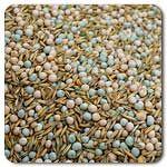 Organic Field Peas/Oats Mix