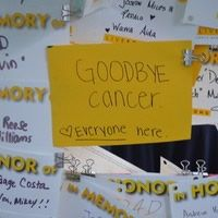 """Goodbye, cancer! Love, Everyone here."" LIVESTRONG is dedicated to fighting cancer and improving the lives of 28 million survivors. #LIVESTRONG fight cancer, cancer inspir, fighting cancer, wood bagot"