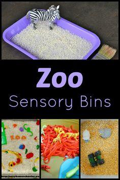 Zoo Sensory Bins...fun ways to learn about animals through sensory play!