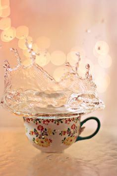 splish splash // sylvia cook