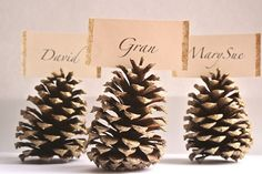 5 Minutes or Less: Pine Cone Place Card Holders