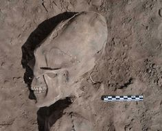 Ancient Alien Artifacts | Archaeologists digging near Mexico's Sonora desert have discovered ...