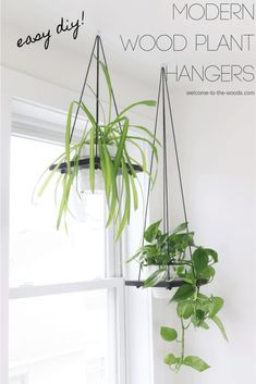 Hang plants from the ceiling with this easy to follow tutorial!