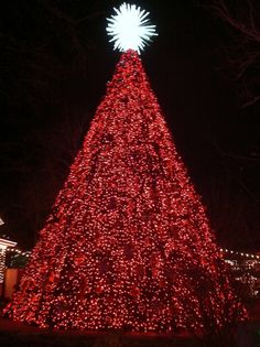 Silver Dollar City. Photo by James Rao.