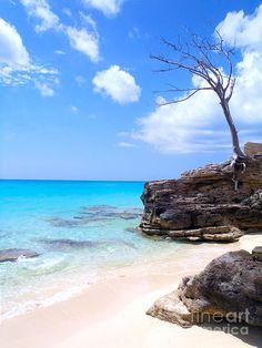 ✯ Bimini Beach - The Bahamas