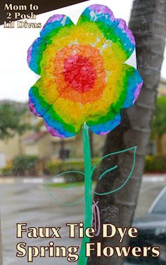 "AMANDA HAS THIS!Faux Tie Dye Flowers - cut out 3-5 ""flowers"" per person and include eye dropper. Include instructions to color on the coffee filter and then use dropper to drop water to see it spread."