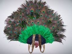 Peacock Tail Front View
