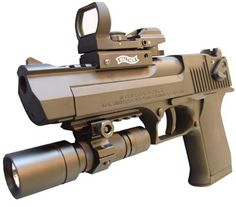 .50 cal Desert Eagle with light and red dot sight