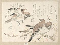 Sparrows and Plum Blossoms