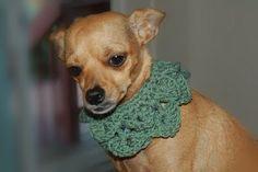 Posh Pooch Designs Dog Clothes: Crocodile Stitch Dog Collar Crochet Pattern