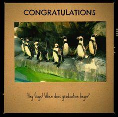 Graduation Photograph Card Penquins Congratulations by MYSAVIOR, $3.00