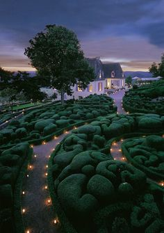The candlelight view of the Garden of Marqueyssac, France.
