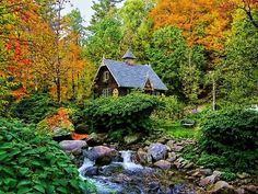 wood, autumn, little cabin, artist cottag, the artist, place, dream houses, forest house, river