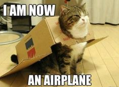 I am now an airplane...