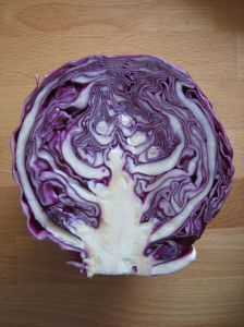 cabbage is a super food in home candida treatment