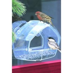 This window bird feeder attaches easily to any window surface.