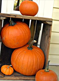 Pumpkins in a crate; front porch decor