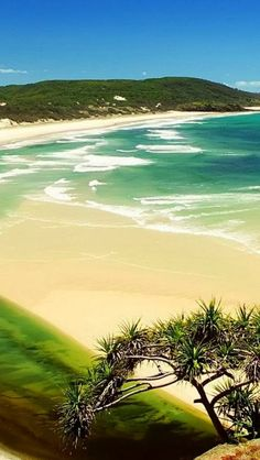 FRASER ISLAND, QUEENSLAND, AUSTRALIA ~