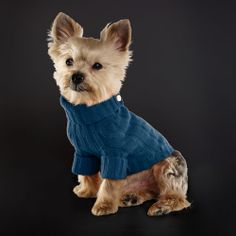 Check out this site! From October 15 thru Nov 15 10 percent of select accessories and apparel will be donated to the ASPCA.