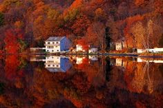 Best-Autumn-Pictures-And-Photos