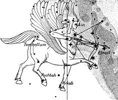 """Sagittarius is generally represented as a centaur with a bow and area. [Photo: William Dwight Whitney, The Century Dictionary and Cyclopedia: An encyclopedic Lexicon of the English Language (New York, NY: The Century Co., 1889)] ©Mona Evans, """"Night Sky Olympics"""" http://www.bellaonline.com/articles/art41582.asp"""