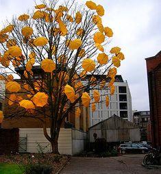 crazy awesome umbrellas