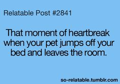 hahaha i thought i was the only one..