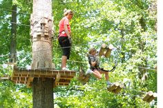 """Grand Opening of Michigan's First """"Aerial Forest Park"""" on August 30 at Frankenmuth"""