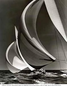 wind in the sails