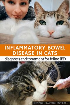 IBD is the commonest