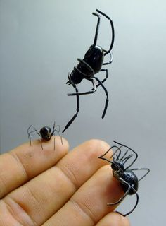 Cool spiders, bro