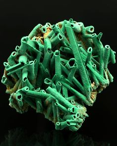 Malachite pseudomorph from Gypsum. From Apex mine, Tutsagubet District, Washington County, Utah, USA