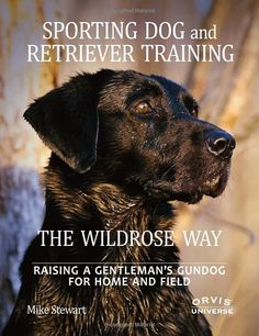 A comprehensive guide to transforming your dog into a valuable wing-shooting companion in the field and at home. Created by Mike Stewart of Wildrose Kennels, the Wildrose Way is a unique, low-force, positive training method that is field-proven for upland and waterfowl gundogs. The training prepares dogs for versatility—any game, any terrain, any destination—and makes them desirable companions for any situation.