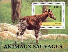 Guinea Okapi Souvenir Sheet okapi souvenir, souvenir sheet