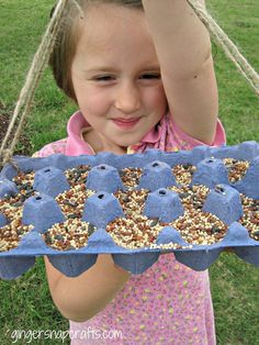 DIY Egg Carton Bird Feeder