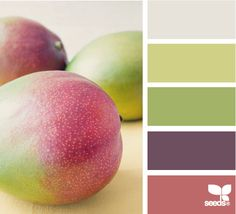 Color: Fruit Hues by Design Seeds - light grey, medium green, sage green, warm purple, deep rose.