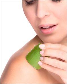 chocolates, pets, natural remedy for sunburn, pantries, beauti, health, diy, cream, natur remedi