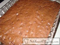 MSPI Safe Brownies!