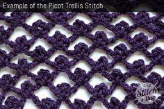Picot Trellis Stitch