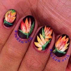 Birds of Paradise flower nails by @sabzmasih