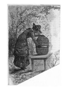 victorian beekeeper print