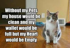 without my pets.