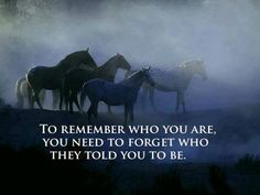 To remember who you are, you need to forget who they told you to be.