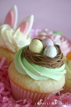 Let's make these for Easter!  Love the nest idea, and super easy.  Easter Cup Cakes.