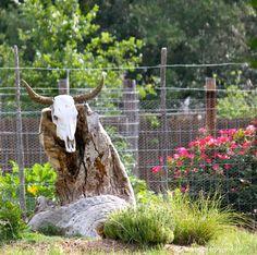 garden bull