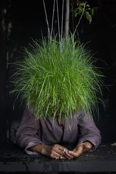 grass head... haha  great project string gardens!