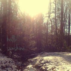Cold morning sun.  Summersville WV